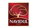 Navidul